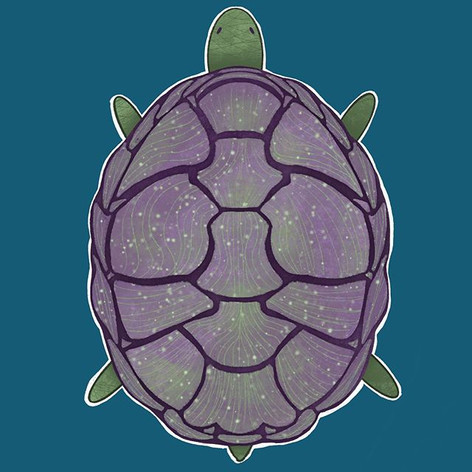 sparkly purple turtle dude
