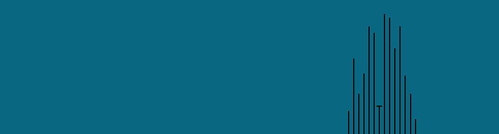 KT-Netzwerk-Website-Header5.jpg