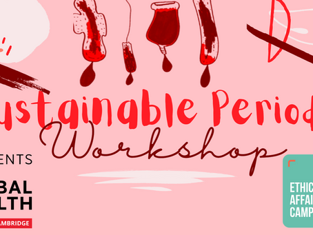 Sustainable Periods Workshop