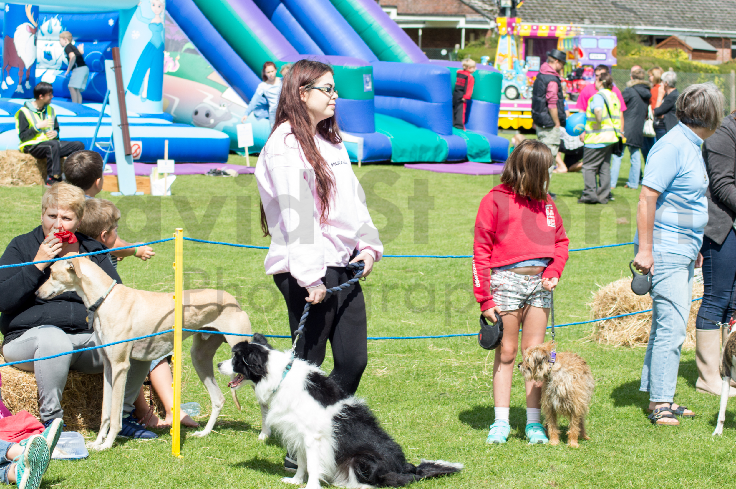 Carnival Funday  (269 of 479)