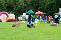 Carnival Funday  (187 of 479)