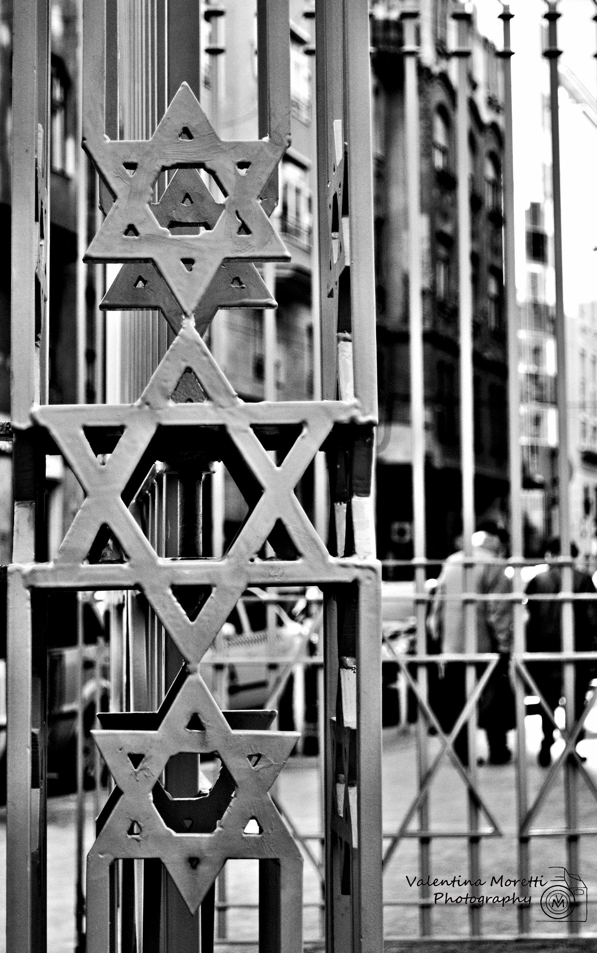 La Grande Sinagoga, dettaglio