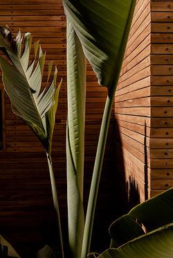 KN593_062-Baja.jpg