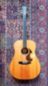 acoustic-guitar-blue-morris-vert.jpg