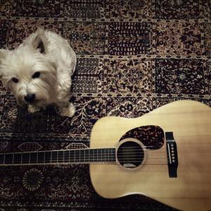 ringo-guitar-lessons-vancouver-acgtr.jpg