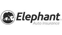 elephant-1_edited.jpg