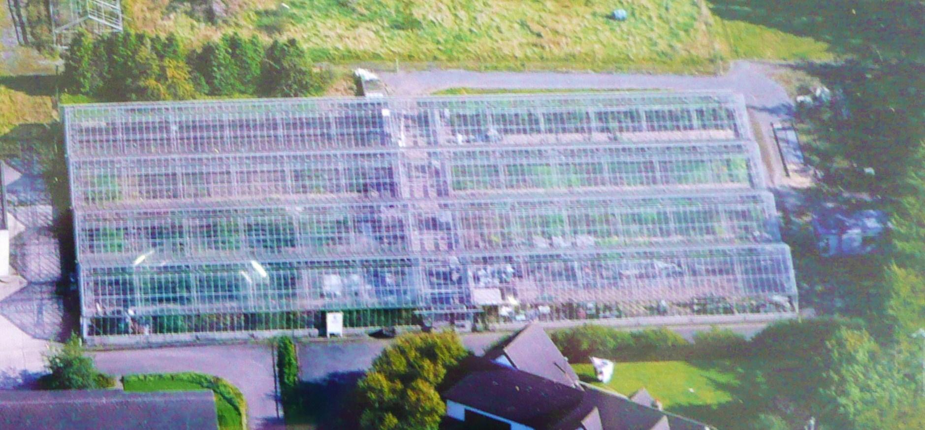 Nursery Aerial View