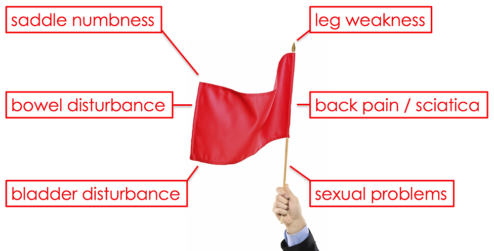 Red Flag Symptoms of Cauda Equina Syndrome