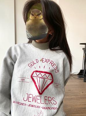 IG_Altered_Gold-Express_3.png