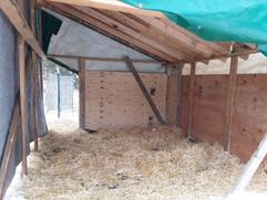 Bah Bah Blacktail Farm (48).jpg