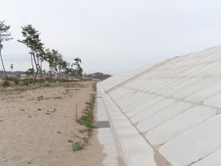 菖蒲田浜海岸、多賀城高校ワークショップ