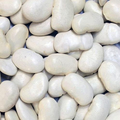 Butter Beans (500g) Organic