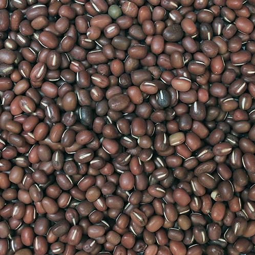 Aduki Beans (500g) Organic