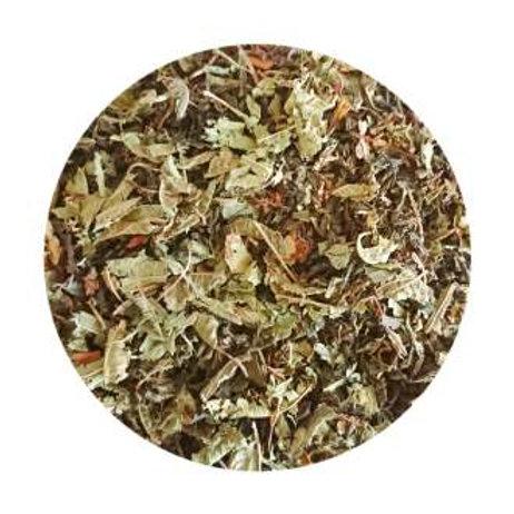 Green Tea Lemon Verbena & Ginger Organic