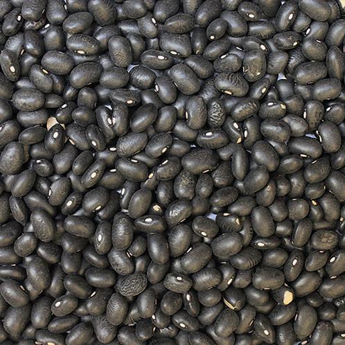 Black Turtle Beans (500g) Organic