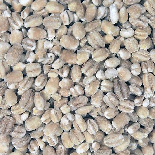 Pearl Barley (500g) Organic