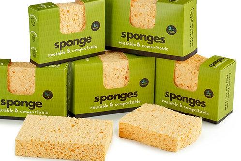 Compostable Sponge (UK Made)