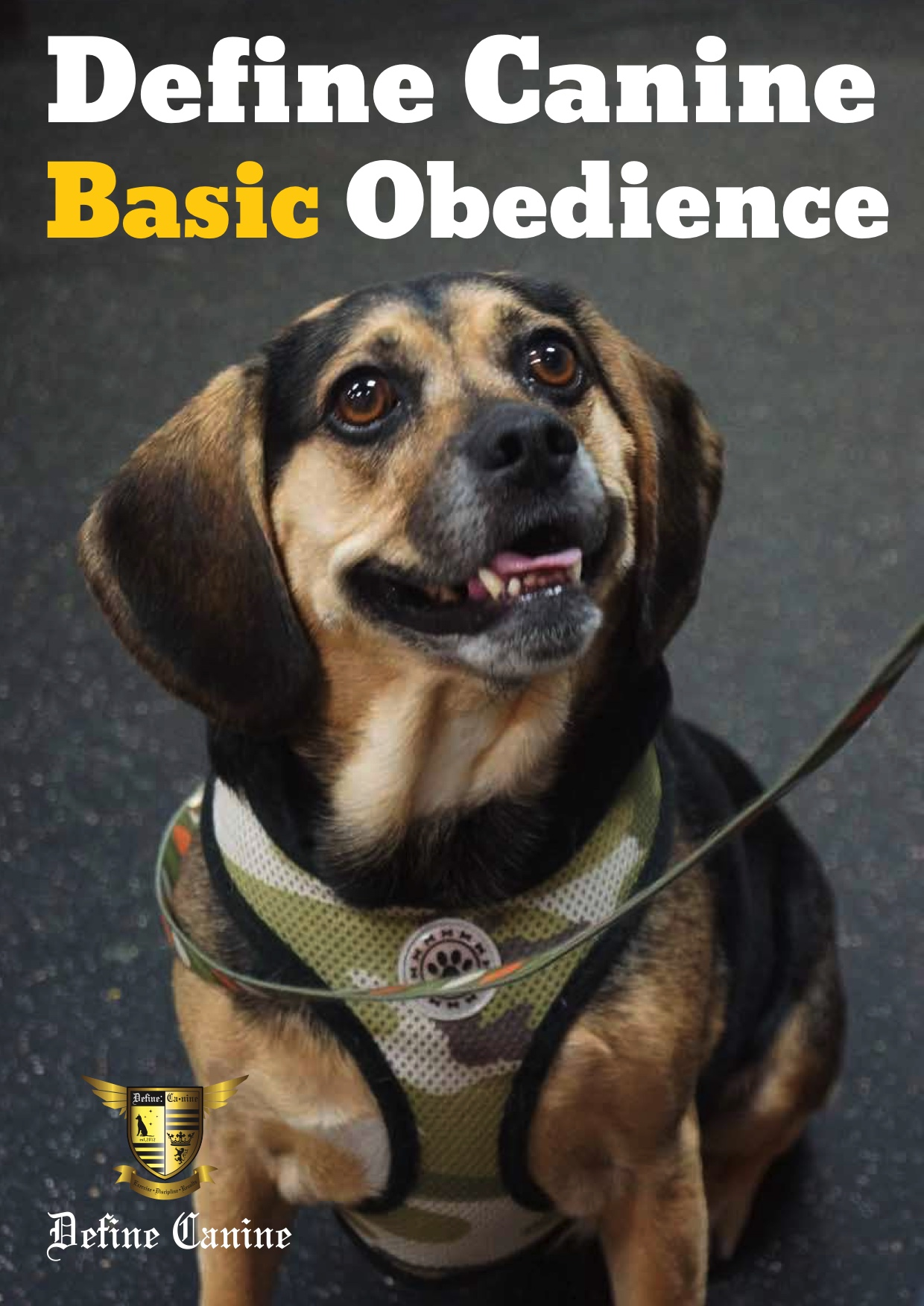 Define Canine Basic Obedience Weeks 1-5.