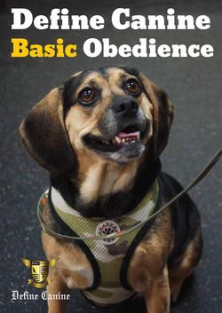 Define Canine Basic Obedience Weeks 1-5.