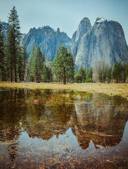Yosemite Reflections, 2020 Edition Archival Matte Fine-Art Print