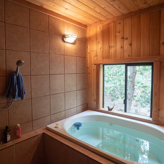 Traditional Japanese bath and hottub