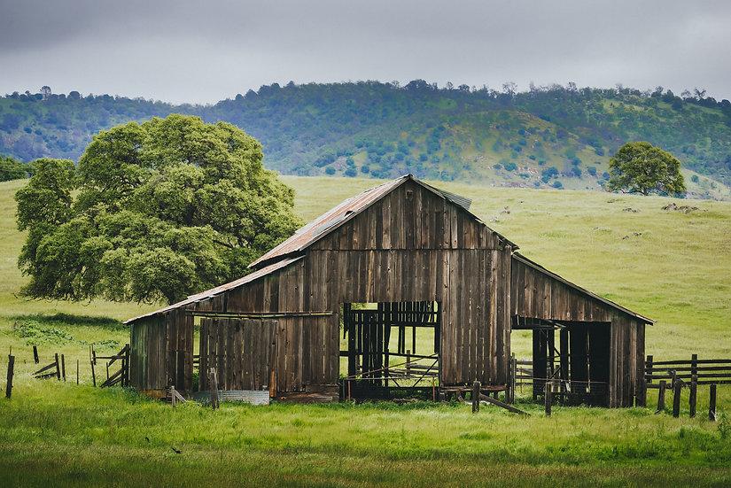 Sierra Foothills Barn, 2020 Edition Archival Matte Fine-Art Print
