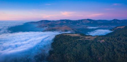 Mattole Fog