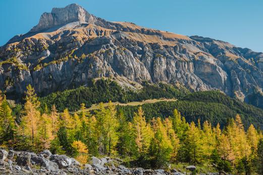 Mont Gond