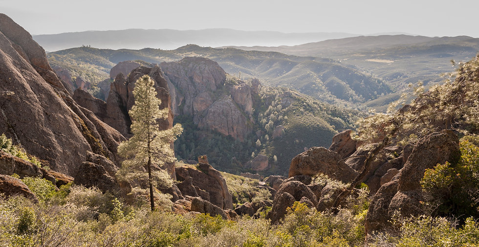 Pinnacles to the Sea, 2020 Edition Archival Matte Fine-Art Print
