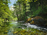 South Fork Indian Creek