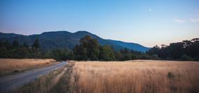 Mattole Valley Dusk