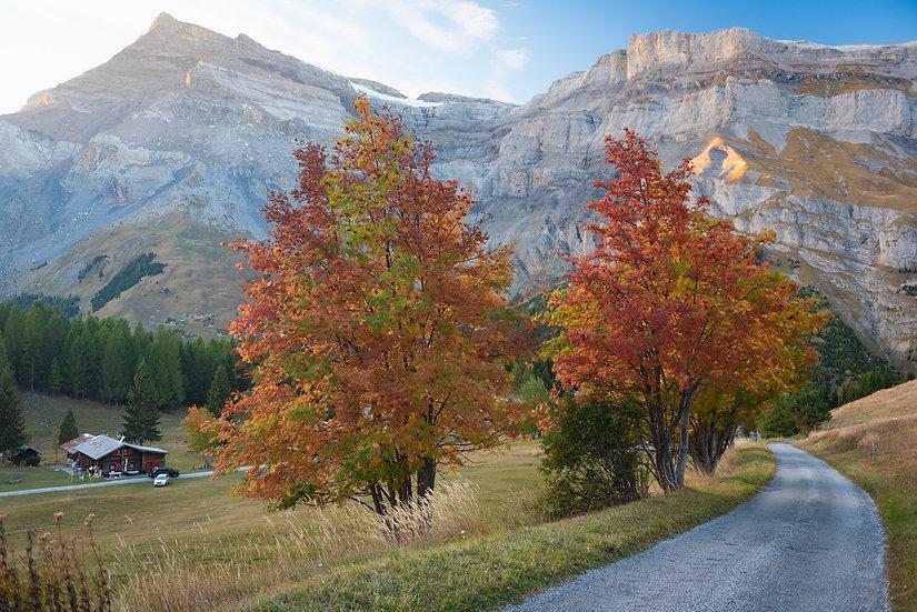 October Alps, 2020 Edition Archival Matte Fine-Art Print