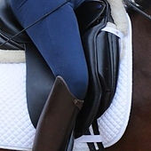 How-to-Use-Your-Upper-Leg-dressage-rider