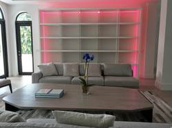 2016 Bookcase 13'x9' with LEDs