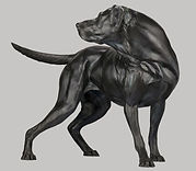 Sculpture - Newman.jpg