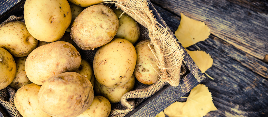 Der Kartoffel-Wickel
