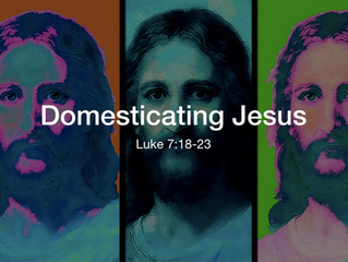 Domesticating Jesus (Luke 7:19-23)