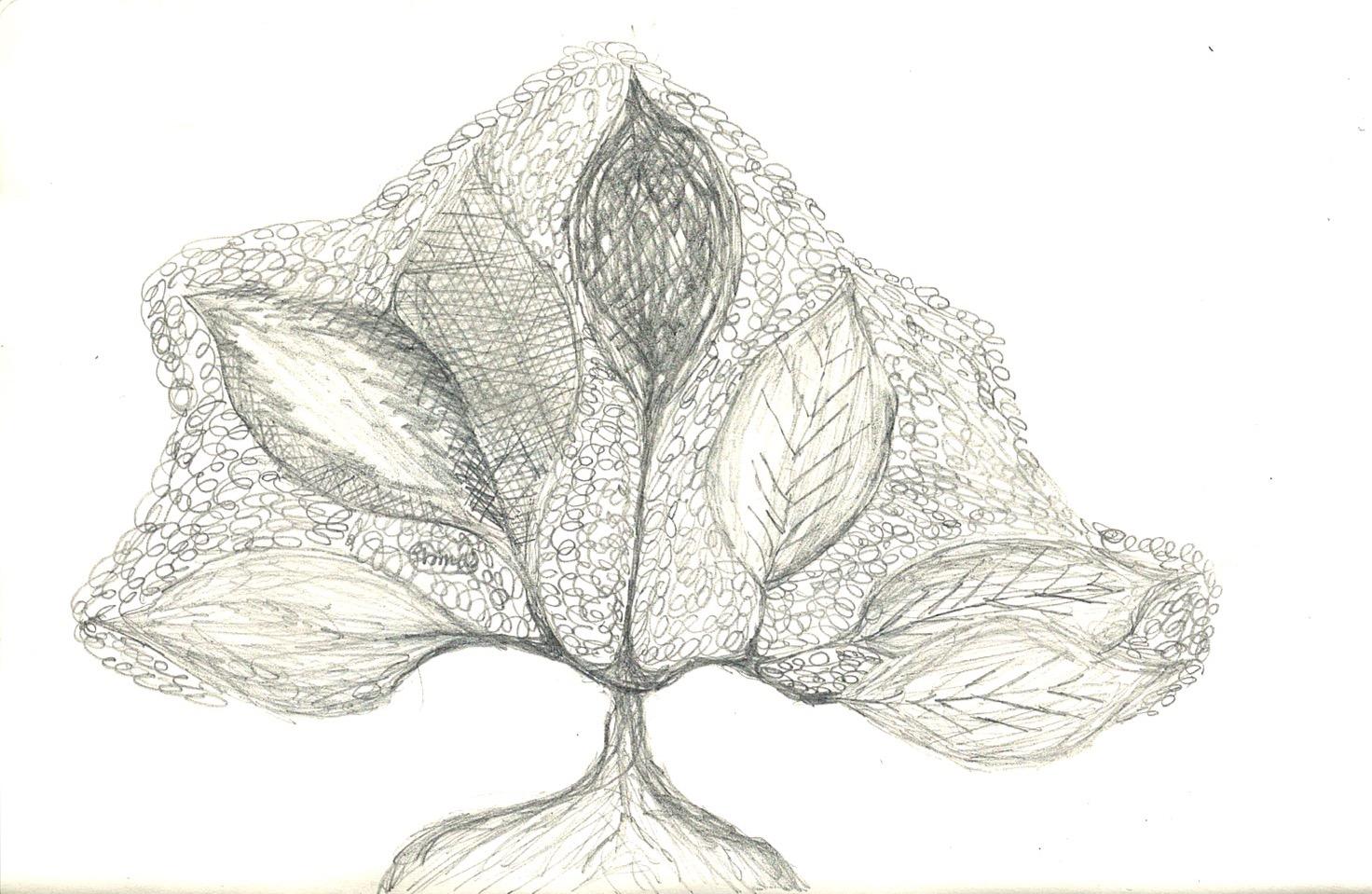 Drawing%2520(burning%2520bush)%25201_edi