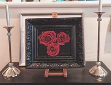 Trilogie de roses