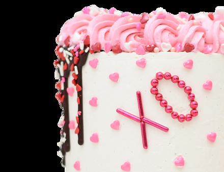 fake cake 6.png