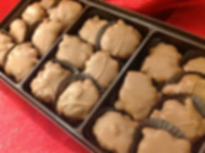 turtles colebrook chocolate.jpg