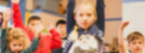 schools-1024x381.jpg