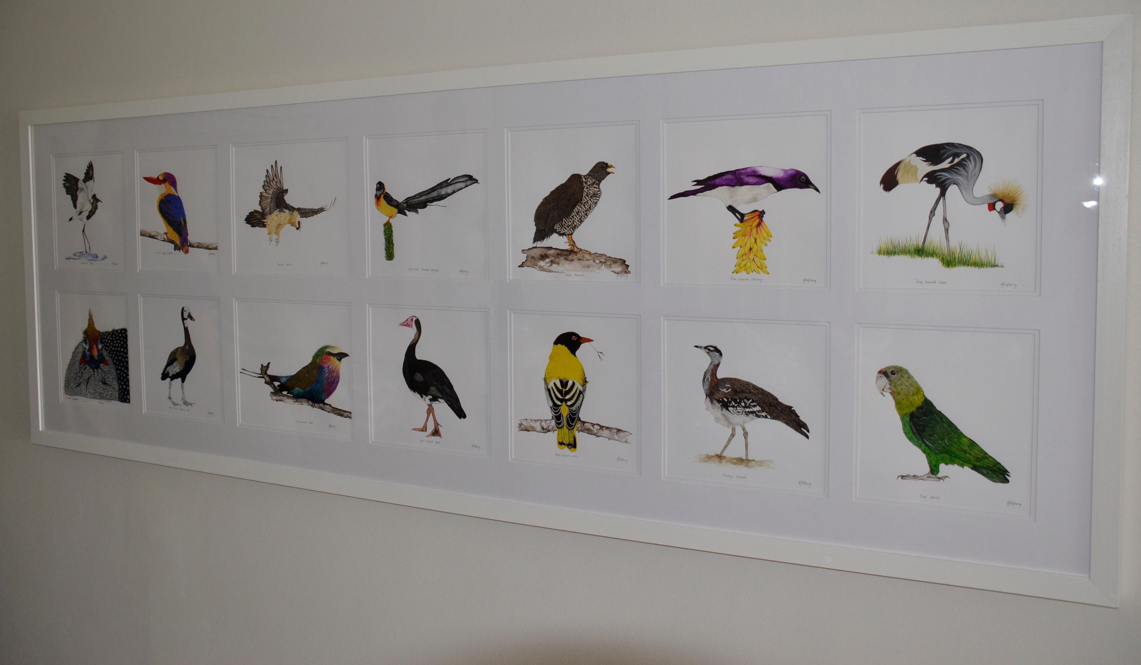 Birds in Formal Lounge