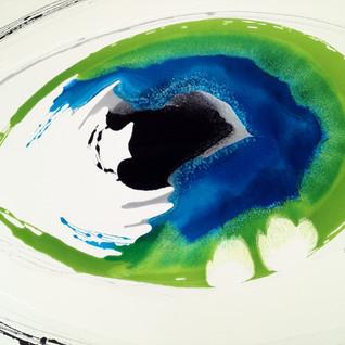 eye2 copy.JPG