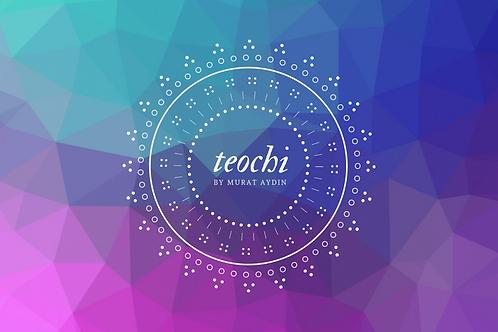 Teochi Practitioner Eğitimi