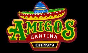 LOGO AMIGOS FIX 2017.png