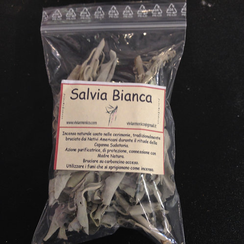 Salvia bianca 15 gr.