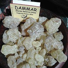 Dammar (Shorea Selanica)   25 g
