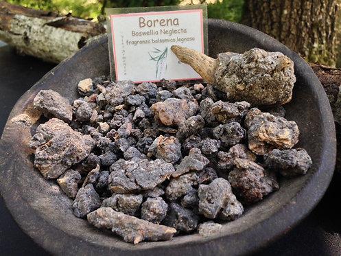 Borena (Boswellia Neglecta) 25g