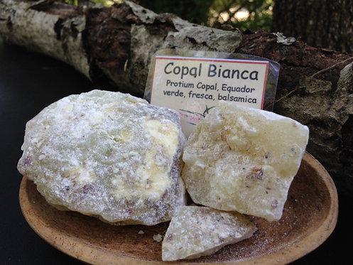 Copal Bianca (Messico) 15 gr